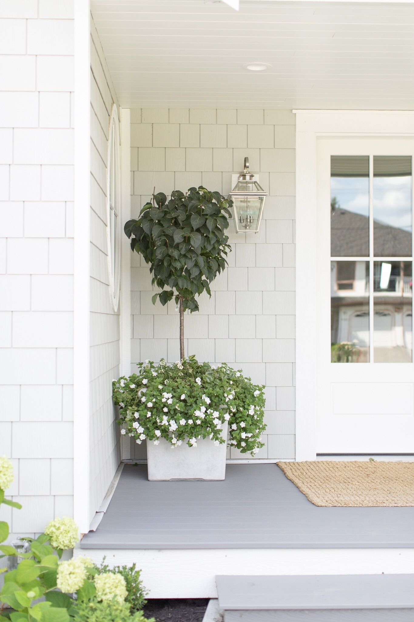 Front Entrance Potted Plant