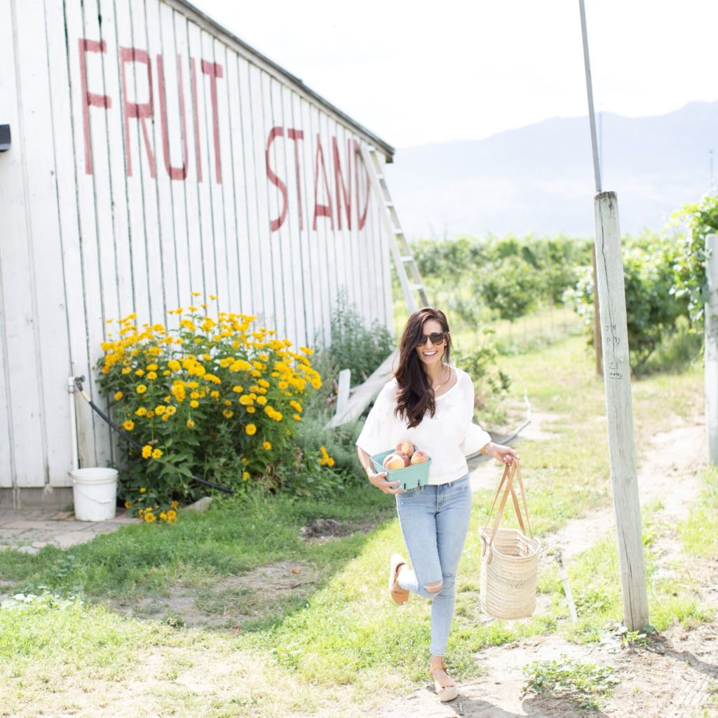 Kelowna Summer Travel Guide including where to eat, where to pick fruit, what to do and the best wineries to visit!